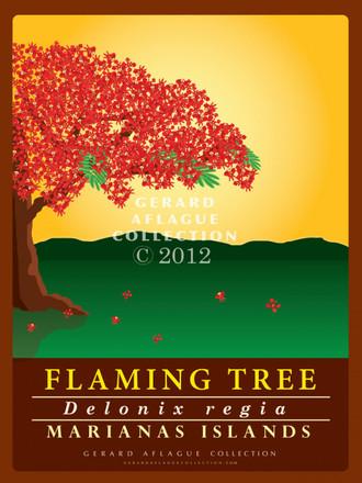 Flaming Tree (Flame Tree)