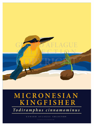 This illustration of the Micronesian Kingfisher makes a beautiful statement about the majesty of this endangered bird.