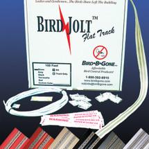 Bird Jolt Flat Track Kit
