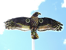 Realistic Hawk the plastic material flaps in the wind creating a double sensory attack of visual and sound
