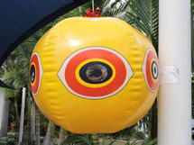 Perfect for protecting outdoor areas at home. The wind creates a rotating eye which gives birds a fright as the eye keeps rotating in a menacing fashion. Comes with reflectors to reflect the sun.