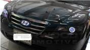 NF Sonata Illuminated LED Headlight Halo Angel Eye Rings 2pc