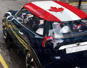 Canada Flag Roof Skin DIY Decal