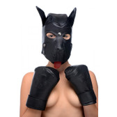 Strict Leather Premium Leather Lace-Up Puppy Play Set
