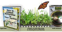 Butterfly and Bird Attracting Garden Starter Kit with Live Plant Plugs