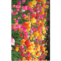 Personalised Luggage Tag - Tulips