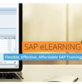 SAP FI A/P Accounts Payable Financial Accounting Basic (User)