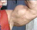 Video 260 Best Of The Biceps Two