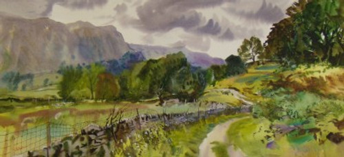 Stonethwaite Bridle Path Borrowdale English Lake district By Ben Haslam BA Hons