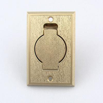 Brass Central Vacuum Inlet Valve
