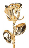 24K Venus Gold Dipped Rose