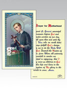 Holy Cards: 800 SERIES - St Gerard/Motherhood