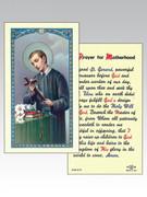 Holy Cards: 800 SERIES - St Gerard/Motherhood