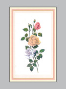 Memorial Cards: Flowers
