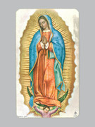 Laminated Holy Cards : Our Lady Guadalupe