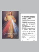 Holy Cards (pkt100): Divine Mercy Chaplet