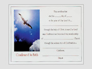 Confirmation Certificate: Landscape Bird in Sky