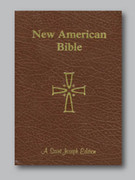 Bible: Giant Type NAB (Brown)