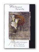 Packet Cards (6): Sympathy
