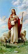 TJP Holy Card: Good Shepherd: Church Unity