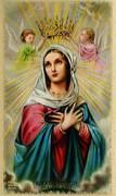 TJP Holy Card: Hail Holy Queen