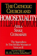 Book: The Catholic Church and Homosexuality (CATHOLIC C/H)