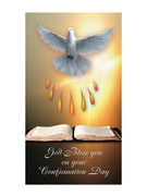 Laminated Holy Cards (each): Confirmation (LC7139)
