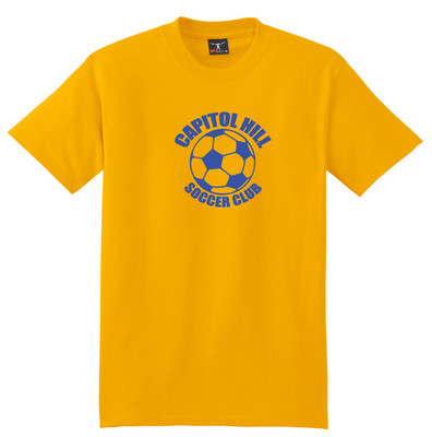 Team Logo T-shirt example