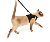 Cat Harness and Leash set
