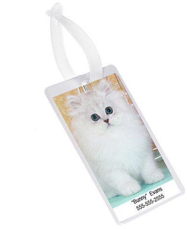 Make your Own Picture Pet Carrier ID Tag. Perfect for Luggage too.