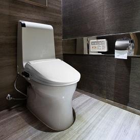 bidet-toilet-seat-275x275.jpg