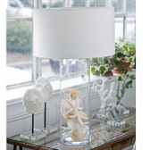 Regina Andrew Display Glass Cylinder Lamp