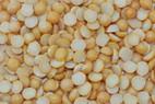 Yellow Split Peas Ten (10 KG)