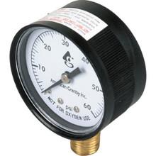 Pool Pressure Gauge, 0-60 PSI Plastic Bottom Mount
