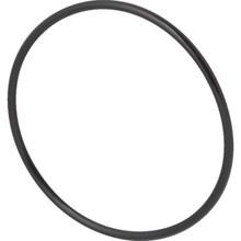 Pool O-Ring, Diffuser