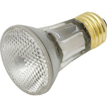 Halogen Bulb Value Light 60W PAR16 Spa