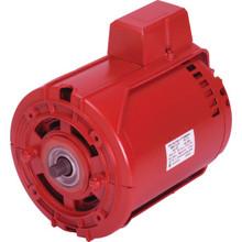Armstrong 1/6 HP Circulator Pump Motor