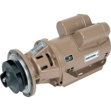 Armstrong 1/3 HP Circulator Pump Less Volute