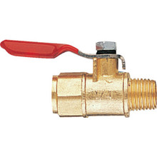 "Winters 1/2"" NPT Mini Ball Valve"