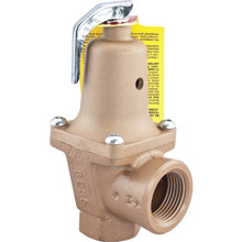 "Watts 3/4"" Water Low Pressure Relief Valve"
