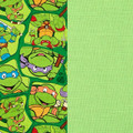 Teenage Mutant Ninja Turtles Kids Weighted Blanket