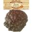 Pecan Cluster covered in the finest handmade Belgian Milk or Dark Chocolate