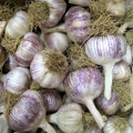 China Stripe Garlic - Bulk
