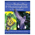 Attracting Butterflies & Hummingbirds to Your Backyard