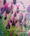 Lavender -The Grower's Guide by Virginia McNaughton
