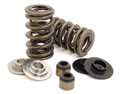 Dual Valve Spring Kit Contents
