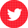 twitter-red-check-circle-social-media-icon.png
