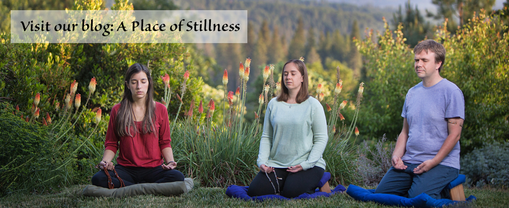 Visit our blog: A Place of Stillness