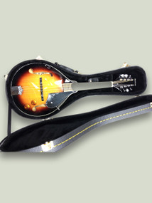 Mandolin hard case