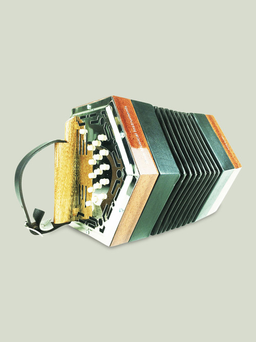 Great quality Stagi Concertina